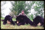 Northern Boreal Trophy Hunts Bear hunting